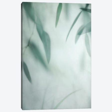 Rhythm Variation II Canvas Print #DPO20} by Dianne Poinski Canvas Art Print