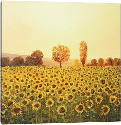 Memories Of The Summer Canvas Art Print