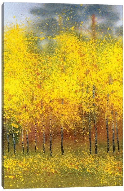 Autumn Birches In The Forest Canvas Art Print