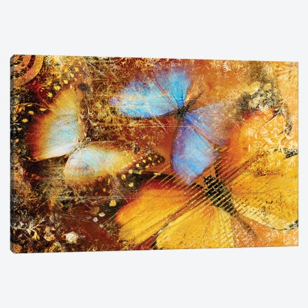 Abstract Background With Colored Butterflies Canvas Print #DPT116} by Maugli Canvas Wall Art