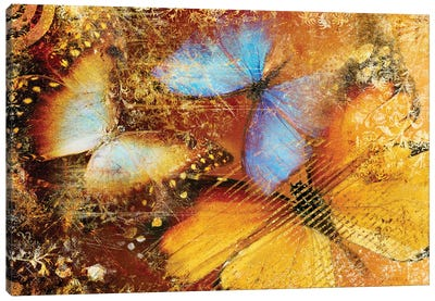 Abstract Background With Colored Butterflies Canvas Art Print