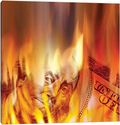Money Burning In Flames Canvas Art Print