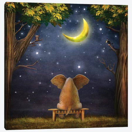 Elephant On A Bench In The Night Forest Canvas Print #DPT131} by natamc Canvas Art Print