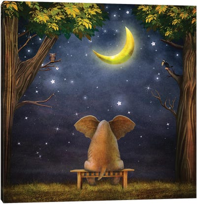 Elephant On A Bench In The Night Forest Canvas Art Print