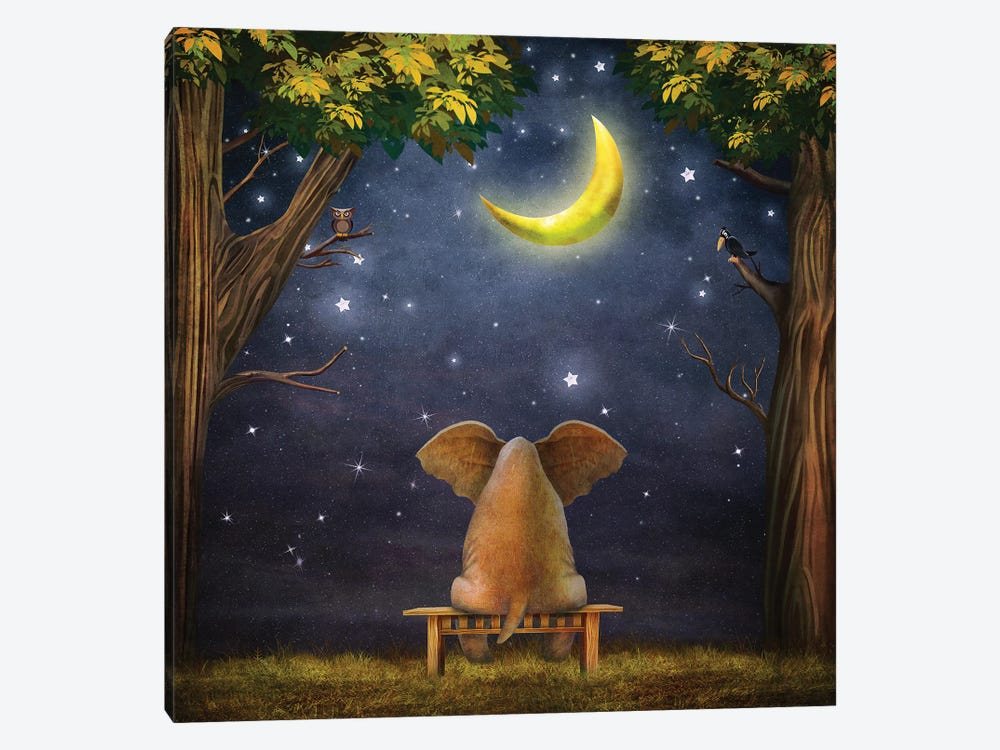 Elephant On A Bench In The Night Forest by natamc 1-piece Canvas Wall Art