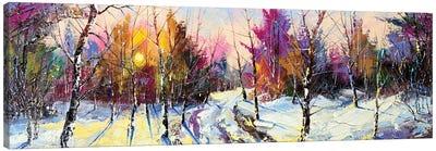 Sunset In Winter Wood Canvas Art Print