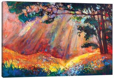 Autumn Forest I Canvas Art Print
