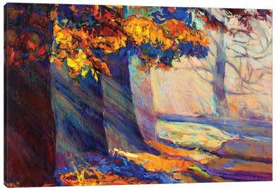 Autumn Forest II Canvas Art Print