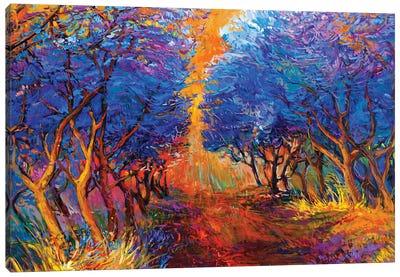Autumn Forest III Canvas Art Print