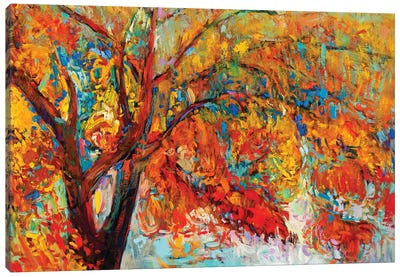 Autumn Tree I Canvas Art Print