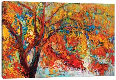 Autumn Tree I Canvas Art Print