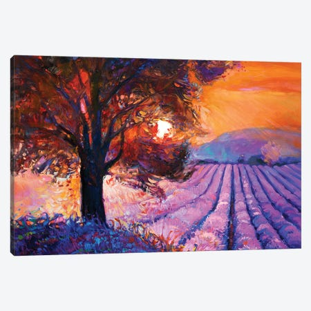 Lavender Fields I Canvas Print #DPT27} by borojoint Art Print