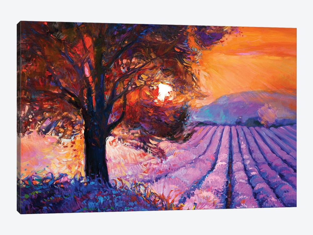 Lavender Fields I by borojoint 1-piece Canvas Art