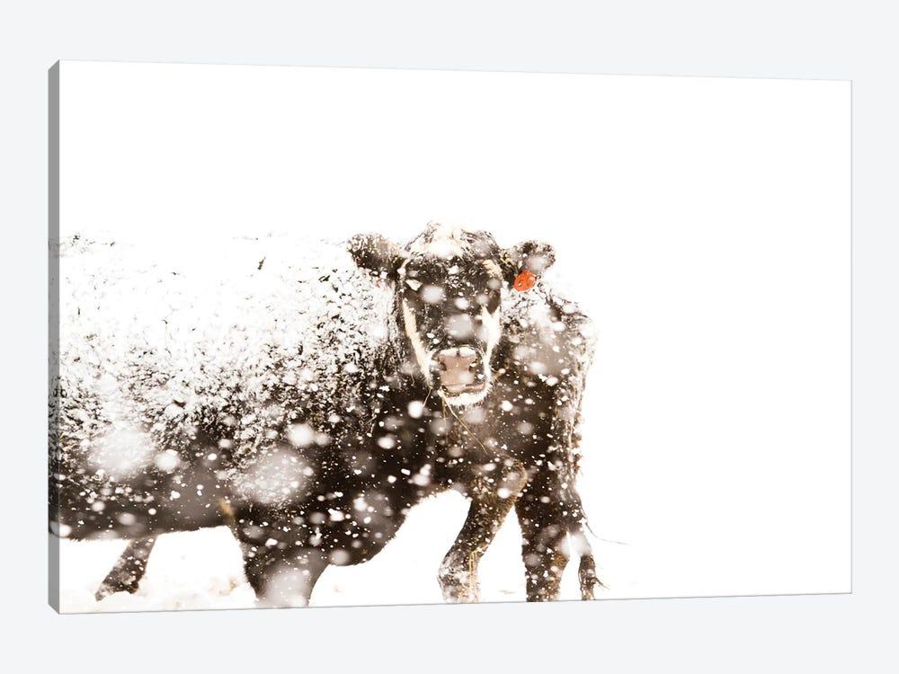 Cattle by urban light 1-piece Art Print