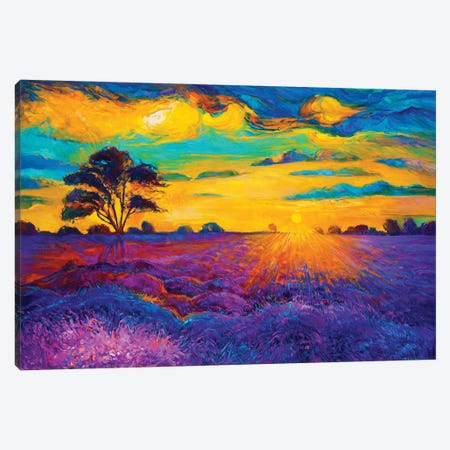 Lavender Fields IV Canvas Print #DPT30} by borojoint Canvas Art Print