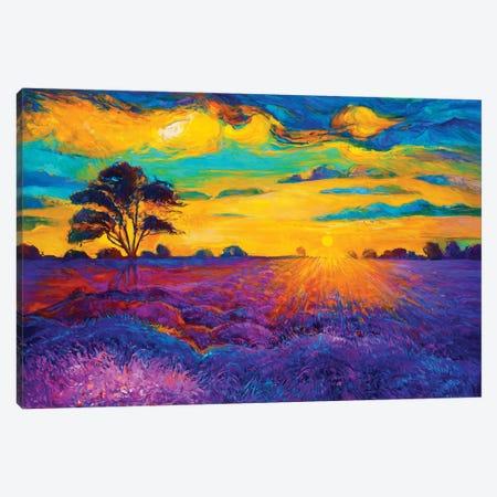 Lavender Fields IV Canvas Print #DPT30} by borojoint Canvas Art Print