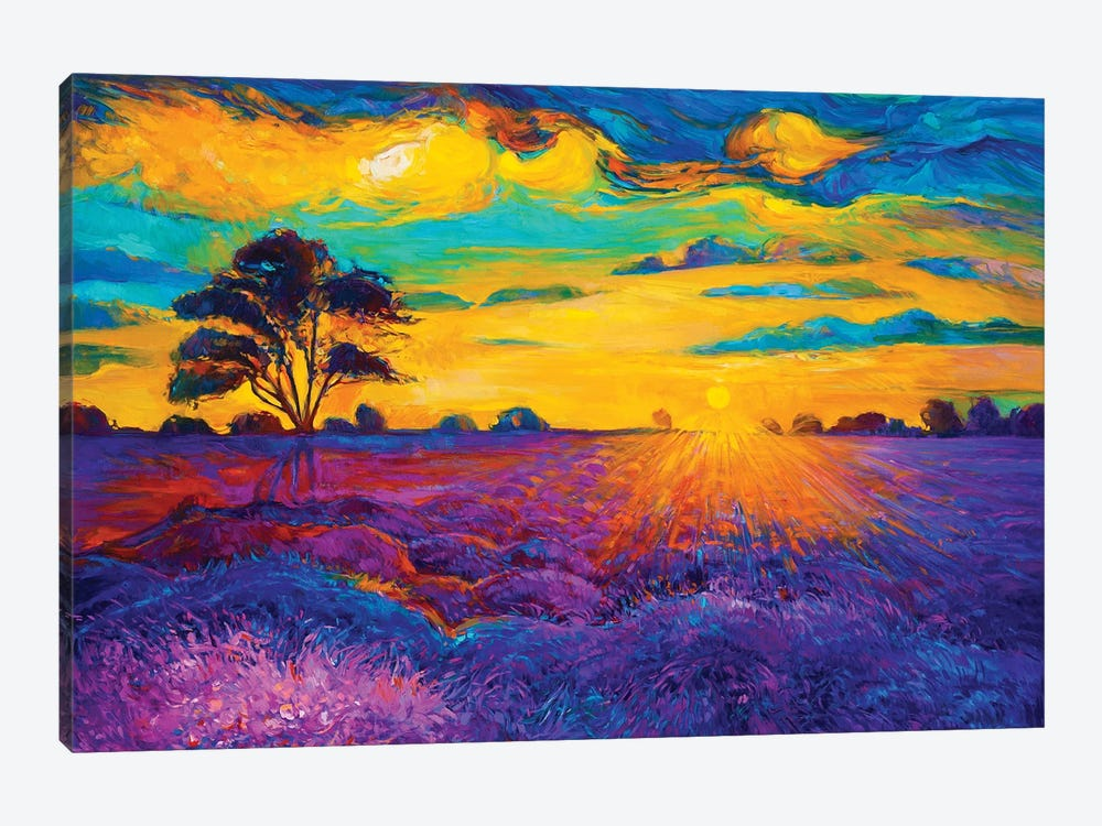 Lavender Fields IV by borojoint 1-piece Canvas Artwork