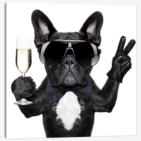 Cocktail Dog Canvas Print #DPT36} by damedeeso Canvas Wall Art
