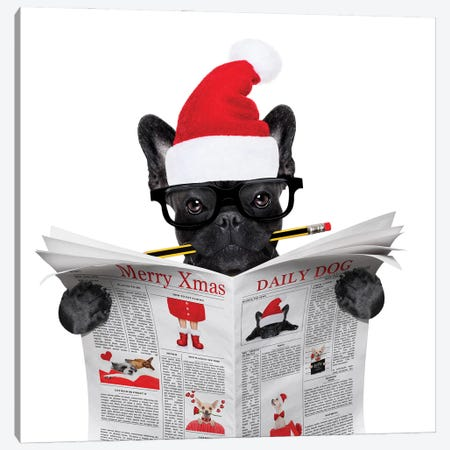 Dog Reading Newspaper On Christmas Holidays Canvas Print #DPT37} by damedeeso Canvas Wall Art