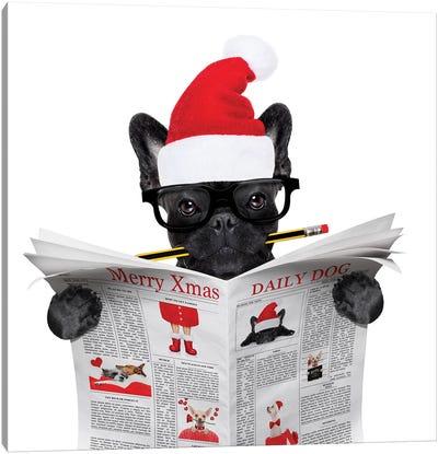 Dog Reading Newspaper On Christmas Holidays Canvas Art Print