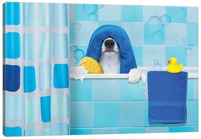Dog In Shower I Canvas Art Print