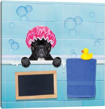 Dog In Shower II Canvas Art Print