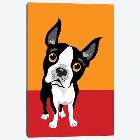 Funny Illustration Of Boston Terrier Canvas Print #DPT405} by Depositphotos Canvas Wall Art