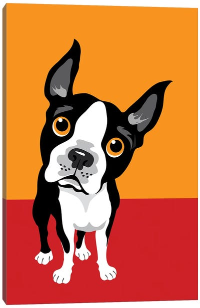 Funny Illustration Of Boston Terrier Canvas Art Print