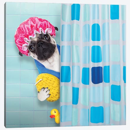Dog In Shower III Canvas Print #DPT40} by damedeeso Canvas Wall Art