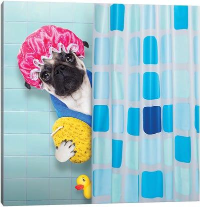 Dog In Shower III Canvas Art Print
