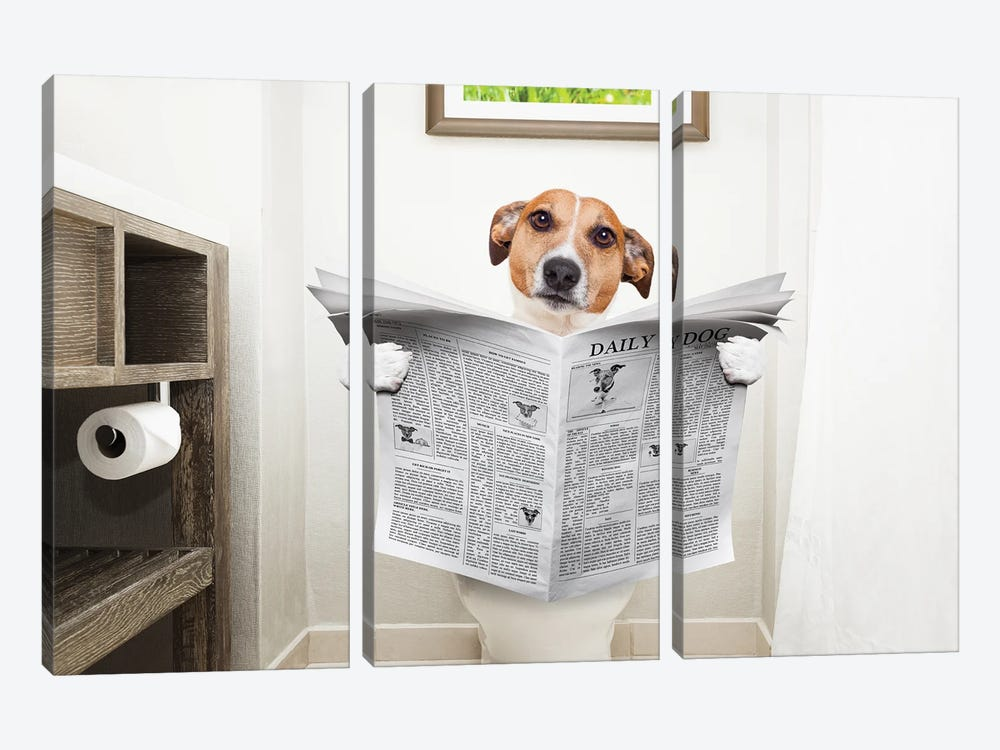 Dog On Toilet Seat Reading Newspaper II by damedeeso 3-piece Canvas Art Print