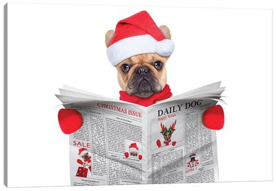 Dog Reading Newspaper Canvas Art Print