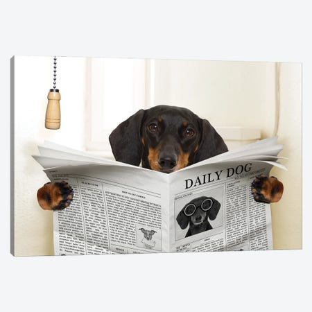 Dog On Toilet Seat Reading Newspaper III Canvas Print #DPT44} by damedeeso Canvas Art Print