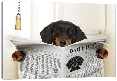 Dog On Toilet Seat Reading Newspaper III Canvas Art Print