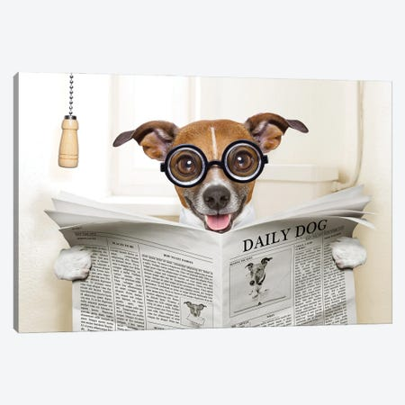 Dog On Toilet Seat Reading Newspaper IV Canvas Print #DPT45} by damedeeso Art Print