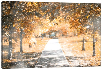 Autumn Park In The First Snow Canvas Art Print