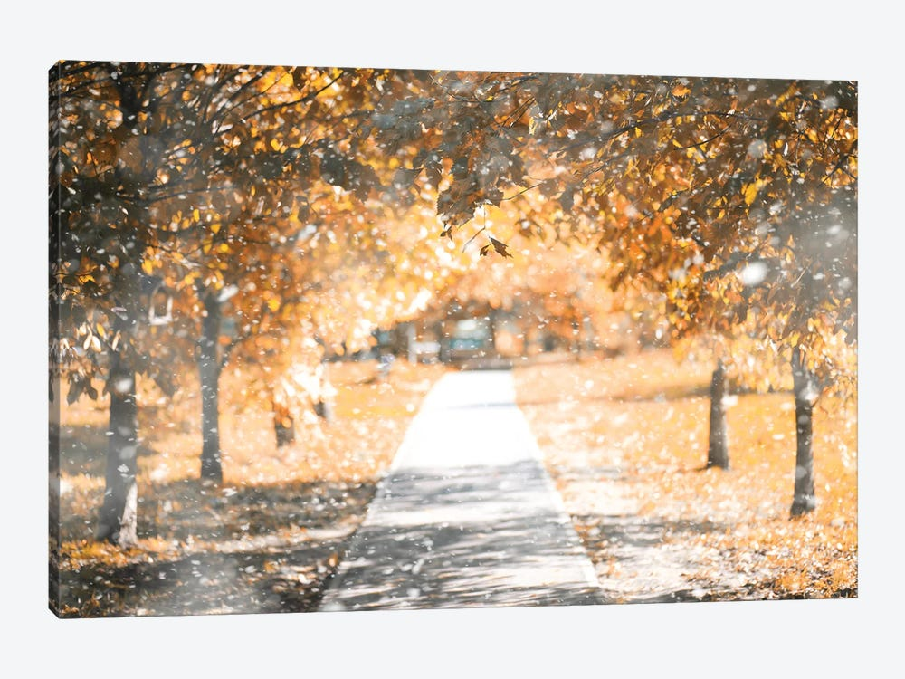 Autumn Park In The First Snow by alexkich 1-piece Canvas Artwork