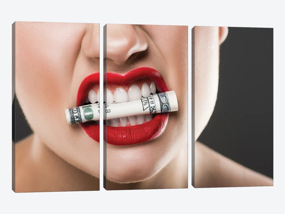 Angry Woman With Red Lips Holding Cash In Teeth Landscape by EdZbarzhyvetsky 3-piece Canvas Artwork