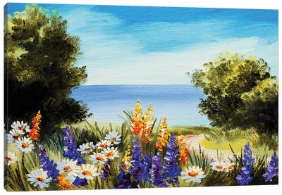 Camomile Field  Of Flowers Near The Sea Canvas Art Print