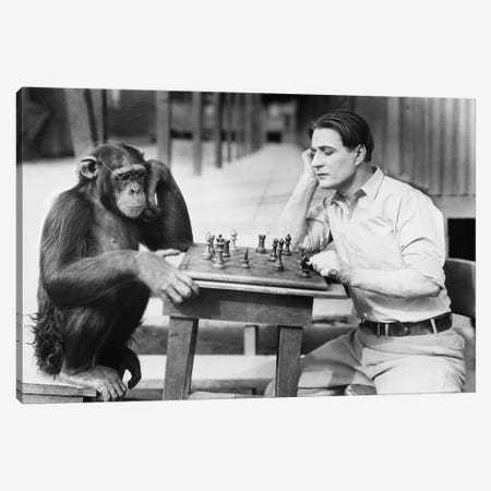 Man Playing Chess With Monkey Canvas Print #DPT57} by everett225 Canvas Wall Art