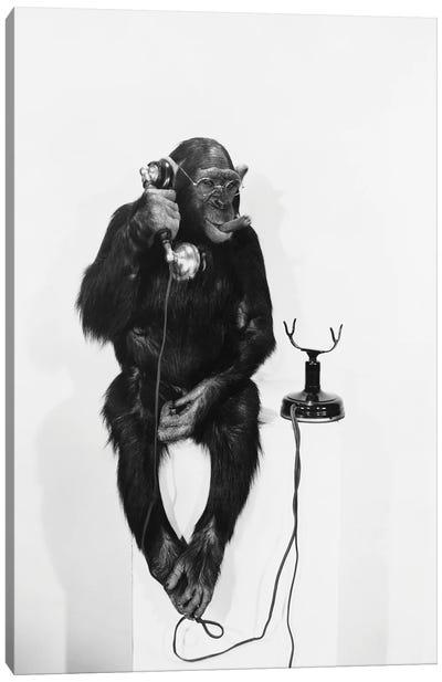 Monkey On The Phone Canvas Art Print