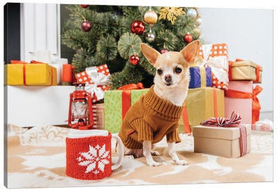 Adorable Chihuahua Dog In Sweater Sitting Near Christmas Presents And Cup Of Hot Drink On Floor Canvas Art Print