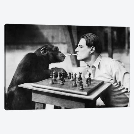 Young Man And A Chimpanzee Smoking Cigarettes And Playing Chess Canvas Print #DPT59} by everett225 Canvas Print