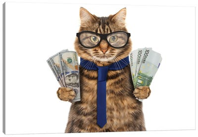 Funny Cat Is Holding Cash Canvas Art Print