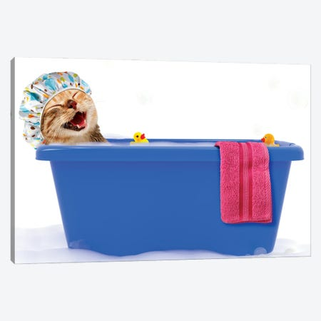 Funny Cat Is Taking A Bath In A Colorful Bathtub With Toy Duck. Canvas Print #DPT63} by funny cats Canvas Wall Art