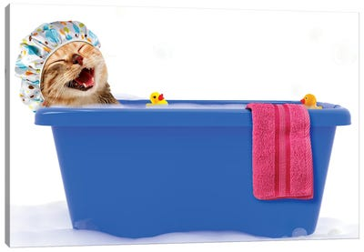 Funny Cat Is Taking A Bath In A Colorful Bathtub With Toy Duck. Canvas Art Print