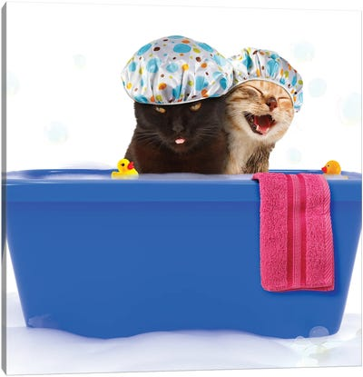 Two Funny Cats Are Taking A Bath In A Colorful Bathtub With Toy Duck. Canvas Art Print