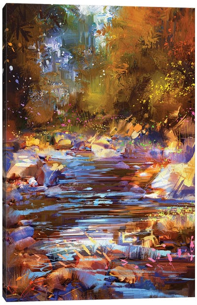 Beautiful Fall River Lines With Colorful Stones In Autumn Forest Canvas Art Print