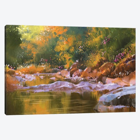 River Lines With Stones In Beautiful Forest Canvas Print #DPT78} by grandfailure Canvas Art Print