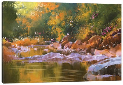 River Lines With Stones In Beautiful Forest Canvas Art Print